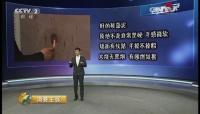 热烈祝贺泥博士硅藻泥入驻中国品牌网