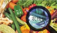 家庭食品安全我们该怎么办?食材净化机有效吗?