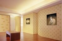 家装旺季莫错过 熟记墙面装修流程